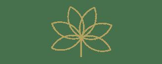 simbolo flor sfera360