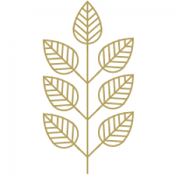simbolo hojas sfera360